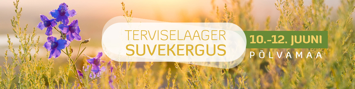 Suvelaager