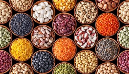 beans-legumes-pulses